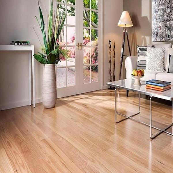 Blackbutt Flooring Living Room