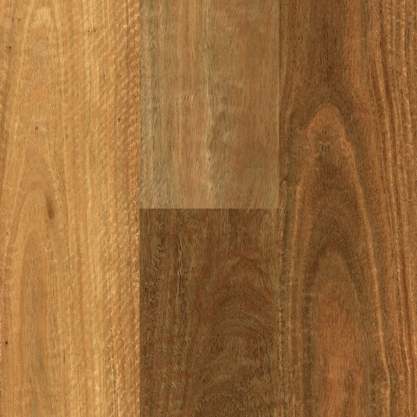 Southern Spotted Gum Swatch 1000px R
