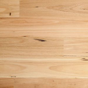 Embelton Blackbutt Gloss